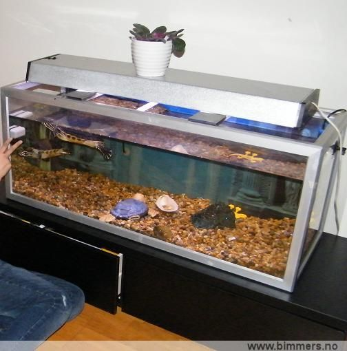 akvariet til salgs